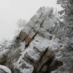 эльвира скала