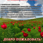 Афиша Дикий ПИОН 18 мая 2019