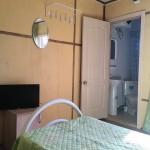 белый лебедь4